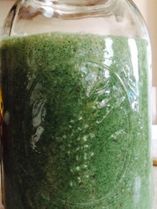 green monster, chlorella, fulvic acid, living silica, banana, smoothie, snogging, swamp thing, antioxidant, joints, connective tissue,